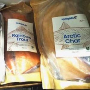 Fish - Arctic Char